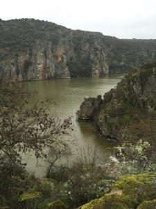 Rio Duero Abelon