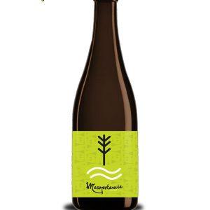Cerveza Artesana fabricada por Aribayos en Zamora